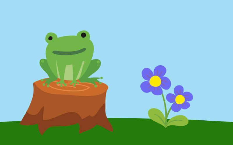 Żabka i kwiatek